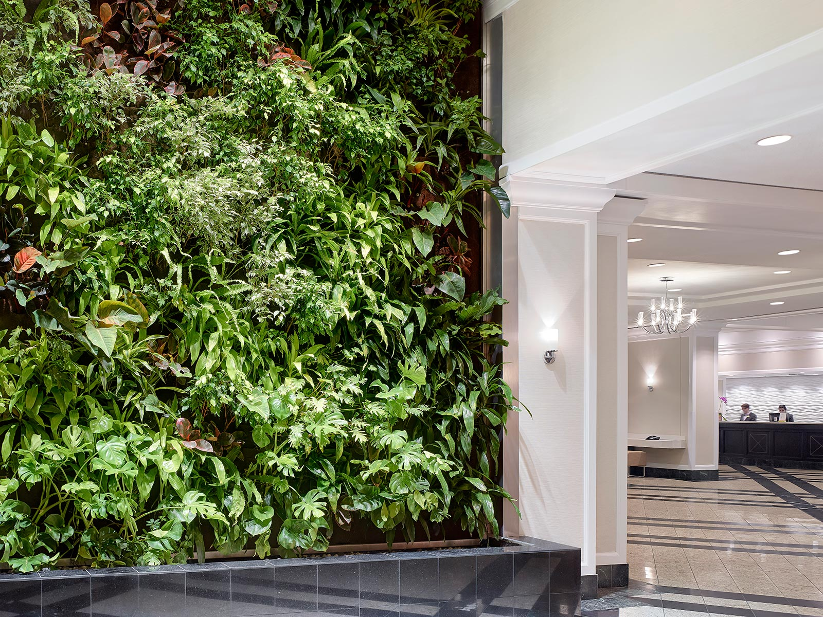 Chelsea Hotel's Green Wall