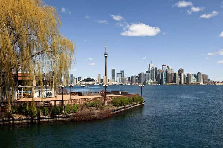 Toronto Central Hotel Contact